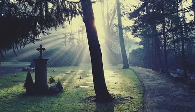 cemetery-883417_640.jpg